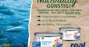 Dosenthunfisch - Fischgenuss mit gutem Gewissen