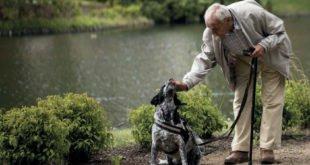 Hilfe für Senioren So kann ein Handy Leben retten