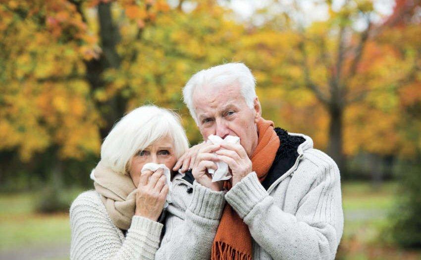 Immunabwehr bei Senioren stärken