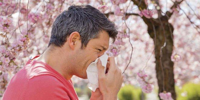 Pollen Hausstaub Schimmel - Tipps für Allergiker