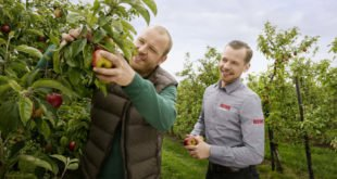 Hilfe für die lokale Landwirtschaft
