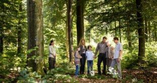Trend zur Beisetzung im Bestattungswald