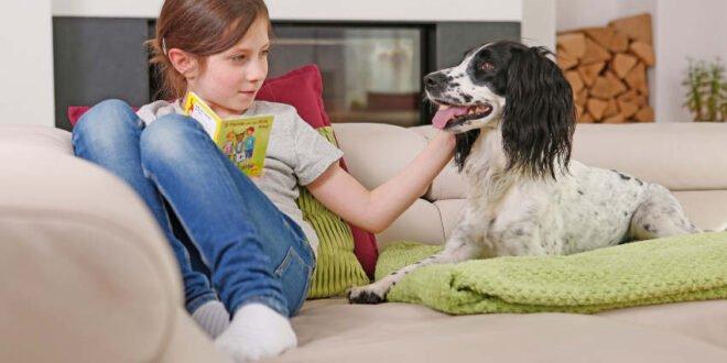 Gesunde Gelenke für Hund und Katze