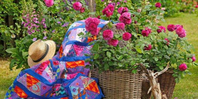 Duftvielfalt der Rose - Garten erleben