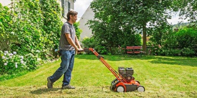 Rasen pflegen - 6 Tipps für gesundes Wachstum